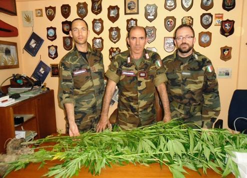 canapa carabinieri
