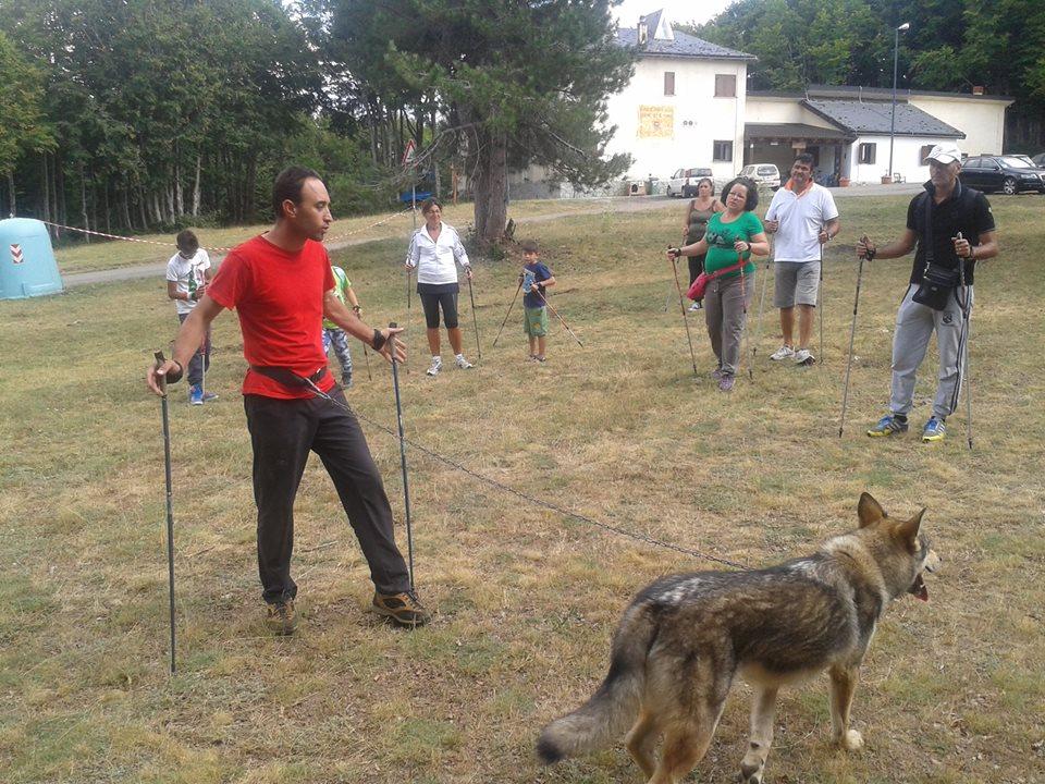 Il lupo 'Sila' pronto ad accompagnare gli escursionisti