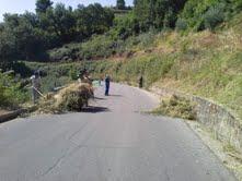 pulizia strade cosenza