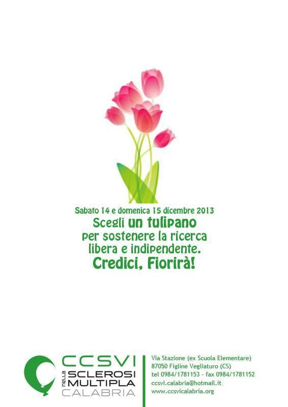 Un tulipano per la ricerca - Calabria