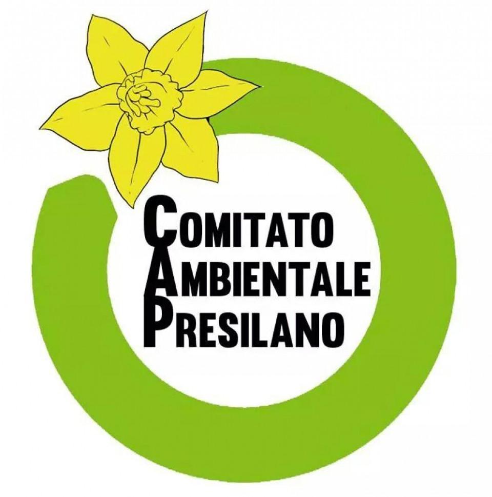 cropped-logo-comitato