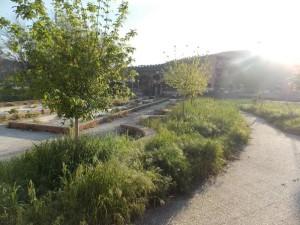 Quartiere Pistoia