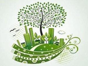 alberi_in_città