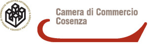 camera-commercio-cs