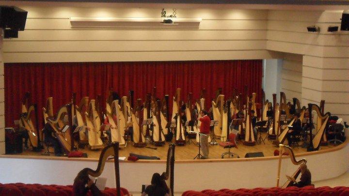 orchestra di arpe 3