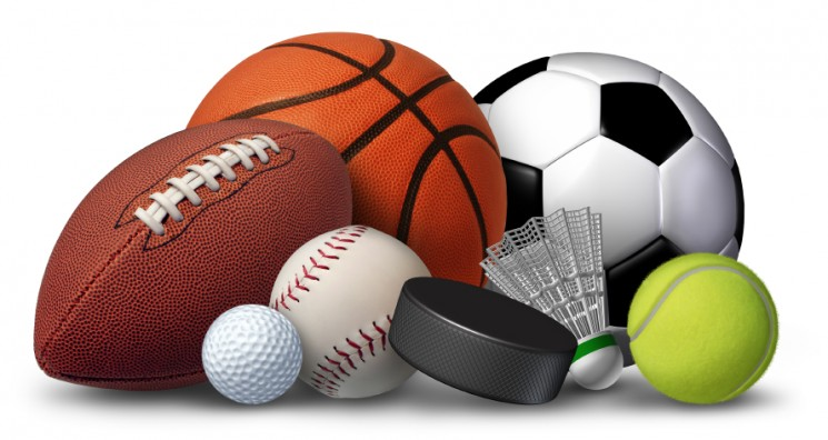 in-sports[1]