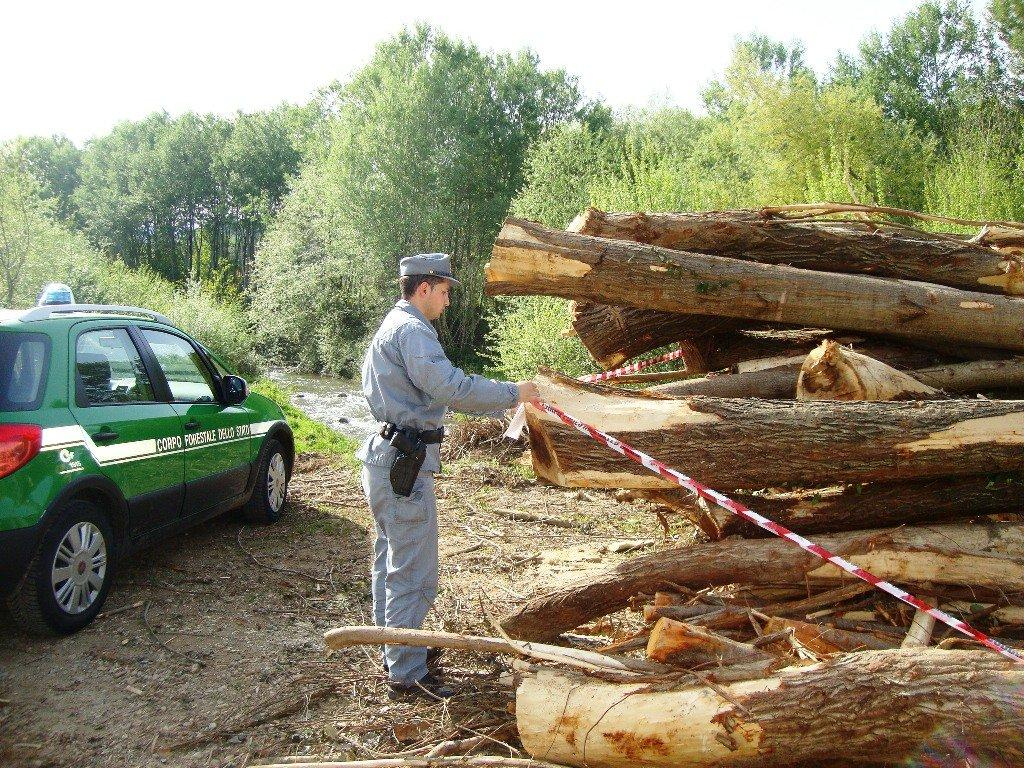 sequestro legna emoli