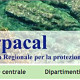 arpacal-675