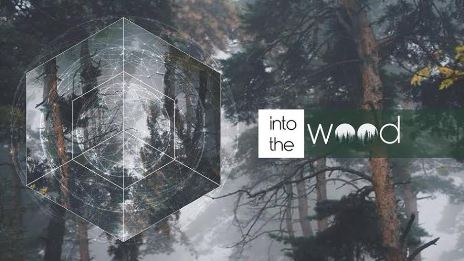 INTO THE WOOD