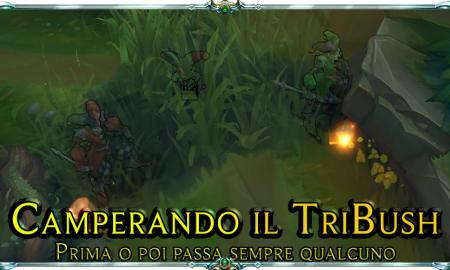 camperando-il-tribush-2