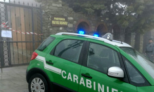 carabinieri forestale verde