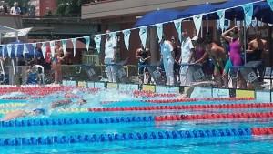 Meeting di nuoto