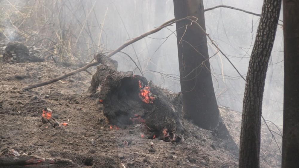 incendio 8