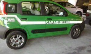 carabinieri_forestali_auto