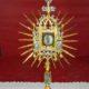 alluce san francesco Oriolo