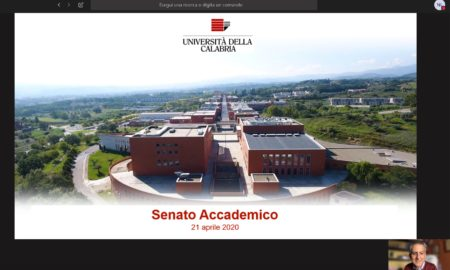 Senato-Unical