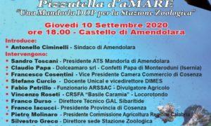 LOCANDINA FESTA MANDORLA 2020