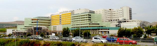 Università Magna Graecia