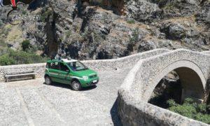 civita carabinieri forestale