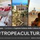 #TropeaCultura (1)